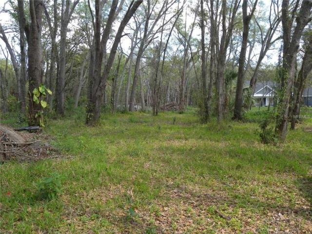 3200 John Moore Road, Brandon, FL 33511 (MLS #T2931664) :: Godwin Realty Group