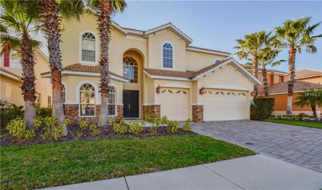 18030 Cozumel Isle Drive, Tampa, FL 33647 (MLS #T2931673) :: Team Bohannon Keller Williams, Tampa Properties