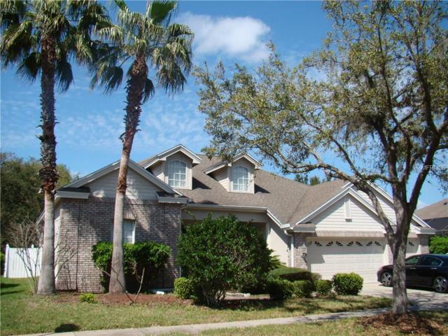19228 Autumn Woods Avenue, Tampa, FL 33647 (MLS #T2931701) :: Team Bohannon Keller Williams, Tampa Properties