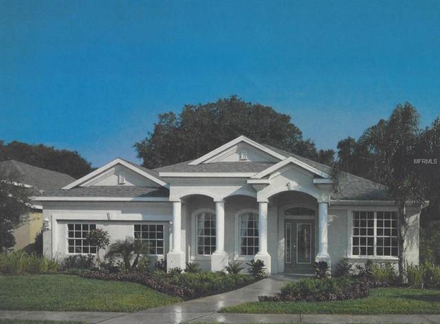 0 Gulf City Road, Ruskin, FL 33570 (MLS #T2931717) :: TeamWorks WorldWide
