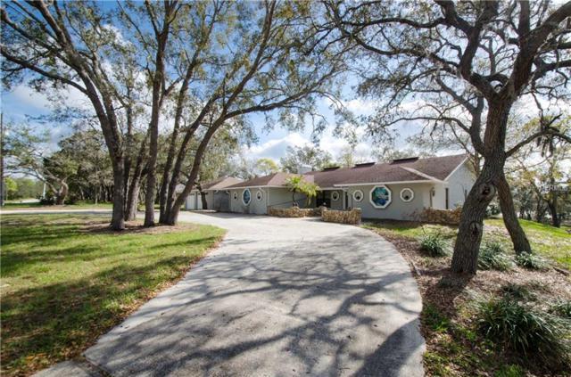 12636 Box Drive, Hudson, FL 34667 (MLS #T2931774) :: Griffin Group
