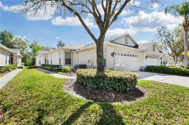 19153 Lake Audubon Drive, Tampa, FL 33647 (MLS #T2931790) :: Team Bohannon Keller Williams, Tampa Properties
