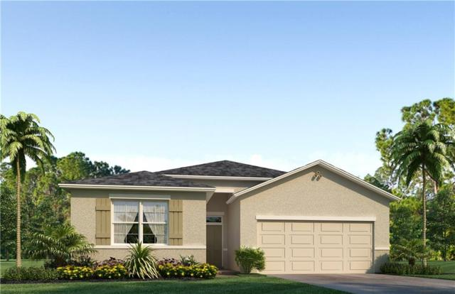 5005 Jackel Chase Drive, Wimauma, FL 33598 (MLS #T2931880) :: The Duncan Duo Team