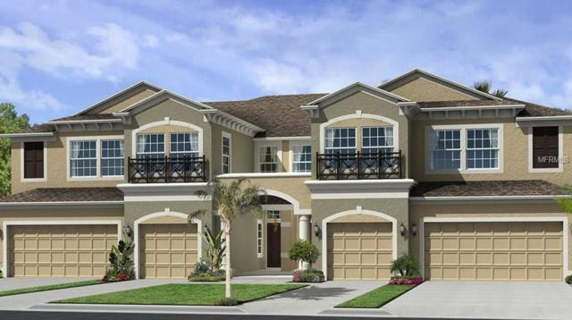 30259 Southwell Lane #49, Wesley Chapel, FL 33543 (MLS #T2931911) :: The Duncan Duo Team