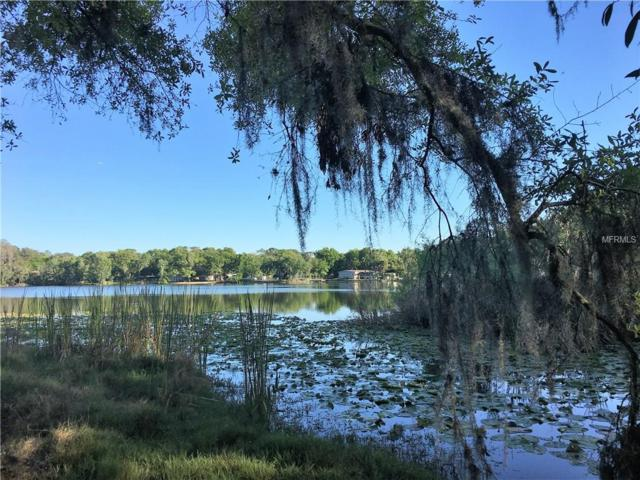 Odessa, FL 33556 :: Team Bohannon Keller Williams, Tampa Properties