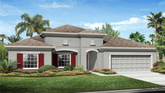 33233 Cypress Bend Drive, Wesley Chapel, FL 33545 (MLS #T2932938) :: Team Bohannon Keller Williams, Tampa Properties