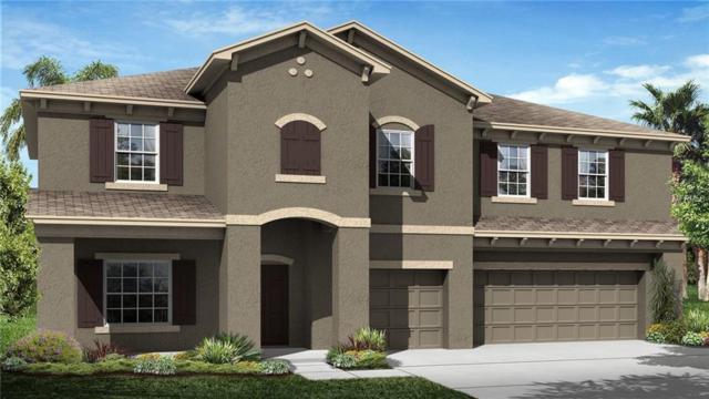 33395 Azalea Ridge Drive, Wesley Chapel, FL 33545 (MLS #T2932970) :: Team Bohannon Keller Williams, Tampa Properties