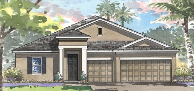 6121 Shadowlake Drive, Apollo Beach, FL 33572 (MLS #T2933017) :: TeamWorks WorldWide