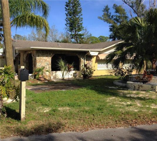 450 Craig Drive, Tarpon Springs, FL 34689 (MLS #T2933053) :: The Duncan Duo Team