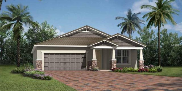 5404 Hope Sound Circle #294, Sarasota, FL 34238 (MLS #T2933747) :: The Duncan Duo Team