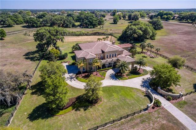 12213 Stonelake Ranch Boulevard, Thonotosassa, FL 33592 (MLS #T2933757) :: Griffin Group