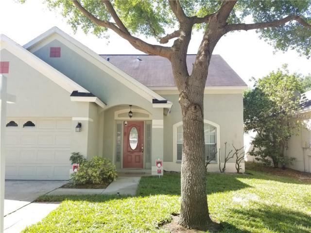 11119 Newbridge Drive, Riverview, FL 33579 (MLS #T2933805) :: BCA Realty