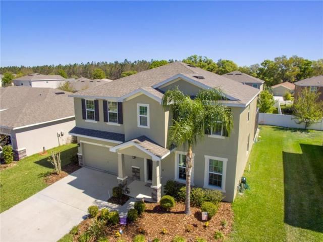 6106 Evansbrook Drive, Zephyrhills, FL 33541 (MLS #T2934007) :: Griffin Group