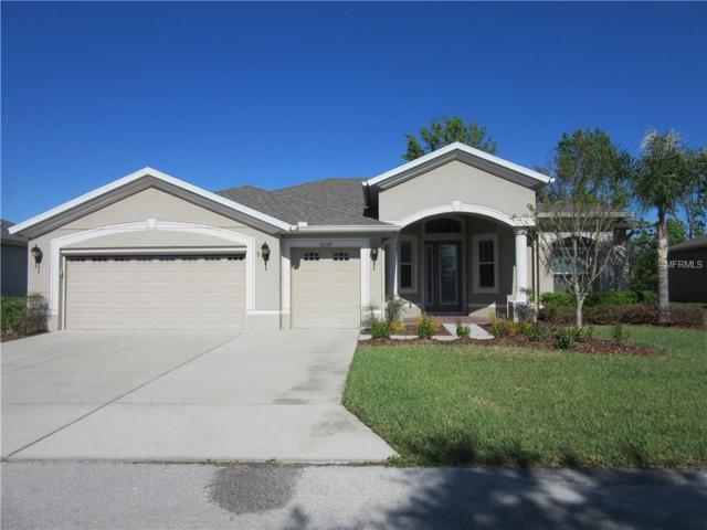 10339 Belmullet Drive, San Antonio, FL 33576 (MLS #T2934021) :: Delgado Home Team at Keller Williams