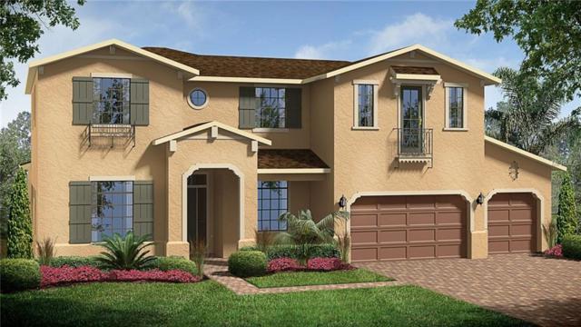 15229 Johns Lake Pointe Boulevard, Winter Garden, FL 34787 (MLS #T2934059) :: G World Properties