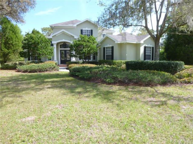 5907 Fitzgerald Road, Odessa, FL 33556 (MLS #T2934062) :: Team Bohannon Keller Williams, Tampa Properties