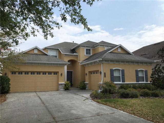 20425 Walnut Grove Lane, Tampa, FL 33647 (MLS #T2934089) :: Delgado Home Team at Keller Williams