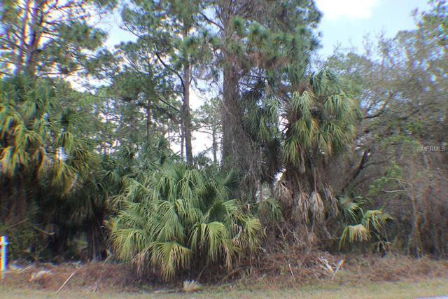 18142 Dickens Avenue, Port Charlotte, FL 33954 (MLS #T2934134) :: RE/MAX Realtec Group