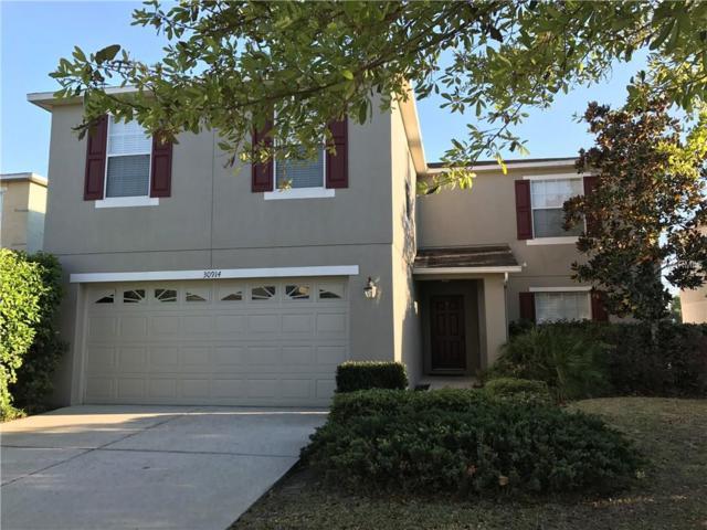 30914 Sonnet Glen Drive, Wesley Chapel, FL 33543 (MLS #T2934177) :: The Duncan Duo Team
