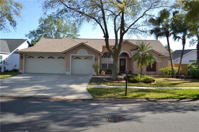 9215 Dayflower Drive, Tampa, FL 33647 (MLS #T2934216) :: Team Bohannon Keller Williams, Tampa Properties