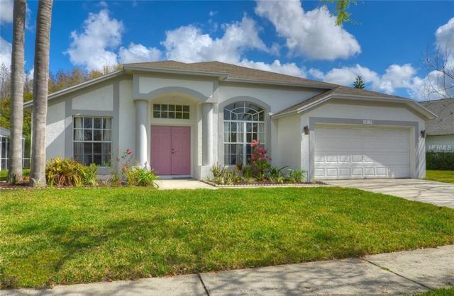 18111 Palm Breeze Drive, Tampa, FL 33647 (MLS #T2934294) :: Team Bohannon Keller Williams, Tampa Properties