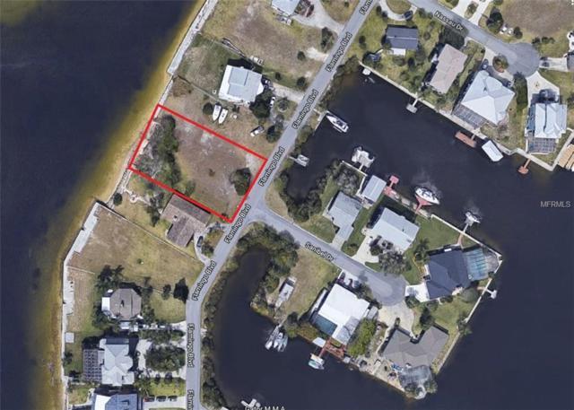 3211 Flamingo Boulevard, Hernando Beach, FL 34607 (MLS #T2934378) :: Griffin Group