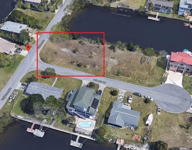 8TH ISLE Drive, Hernando Beach, FL 34607 (MLS #T2934402) :: Griffin Group