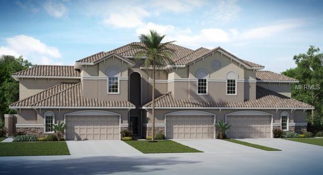 1266 Godavari Way, Wesley Chapel, FL 33543 (MLS #T2934412) :: The Duncan Duo Team