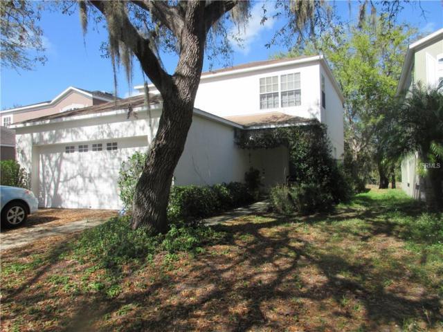 18128 Birdwater Drive, Tampa, FL 33647 (MLS #T2934707) :: Team Bohannon Keller Williams, Tampa Properties