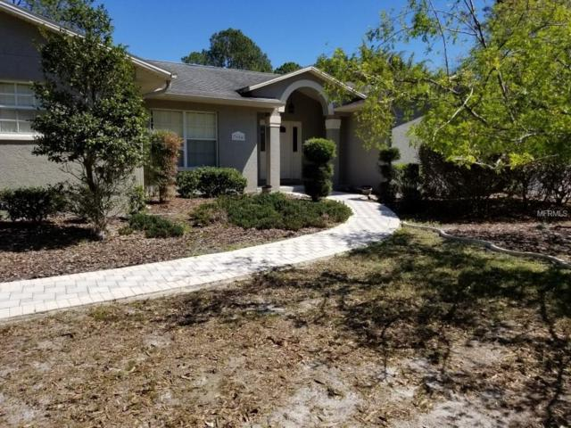 7604 Thunderhead Street, Wesley Chapel, FL 33544 (MLS #T2934754) :: The Duncan Duo Team