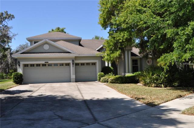 5005 Tari Stream Way, Brandon, FL 33511 (MLS #T2934760) :: Arruda Family Real Estate Team