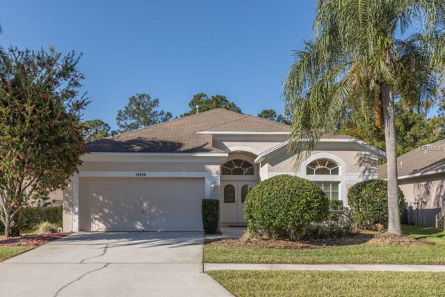14434 Pepperpine Drive, Tampa, FL 33626 (MLS #T2934785) :: Gate Arty & the Group - Keller Williams Realty
