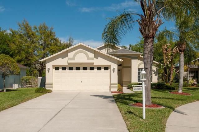1314 Hickory Moss Place, Trinity, FL 34655 (MLS #T2934822) :: Delgado Home Team at Keller Williams