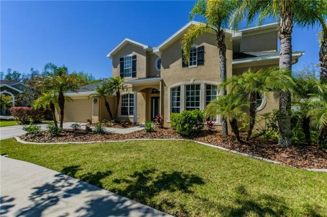 16146 Colchester Palms Drive, Tampa, FL 33647 (MLS #T2934860) :: Team Bohannon Keller Williams, Tampa Properties