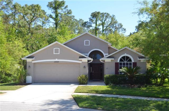 12502 Blazing Star Drive, Tampa, FL 33626 (MLS #T2934935) :: Gate Arty & the Group - Keller Williams Realty