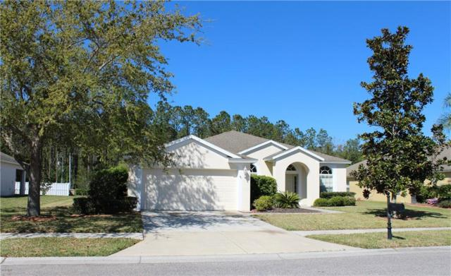 5043 Lurgan Road, Land O Lakes, FL 34638 (MLS #T2935016) :: Arruda Family Real Estate Team