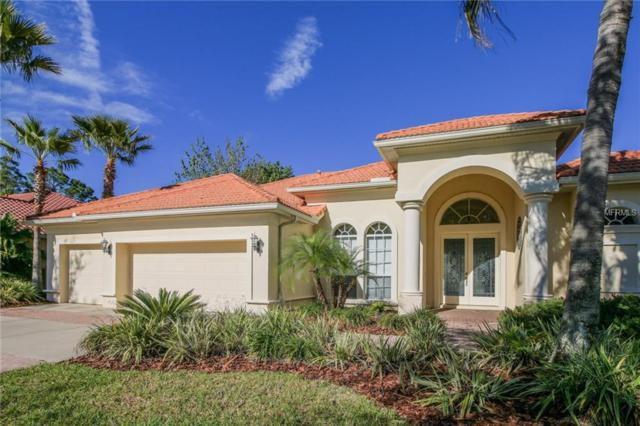 17235 Emerald Chase Drive, Tampa, FL 33647 (MLS #T2935140) :: Team Bohannon Keller Williams, Tampa Properties