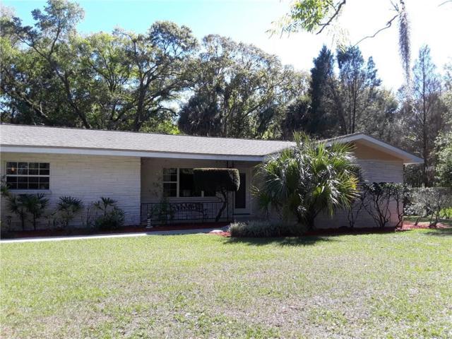 807 E Chapman Road, Lutz, FL 33549 (MLS #T2935186) :: Arruda Family Real Estate Team