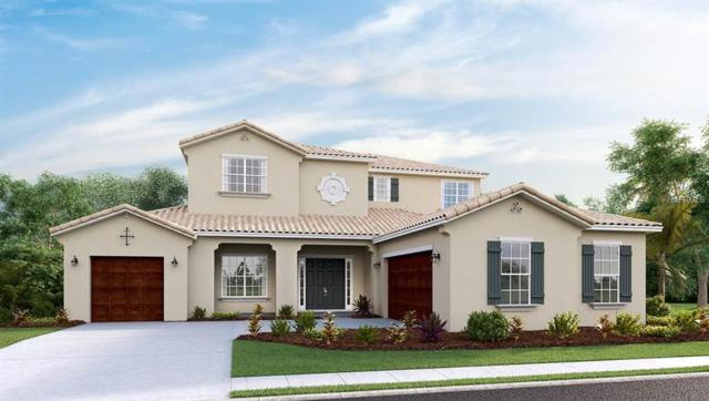 16618 6TH Avenue E, Bradenton, FL 34212 (MLS #T2935237) :: White Sands Realty Group