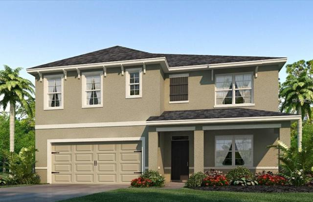 4009 Willow Branch Place, Palmetto, FL 34221 (MLS #T2935253) :: White Sands Realty Group
