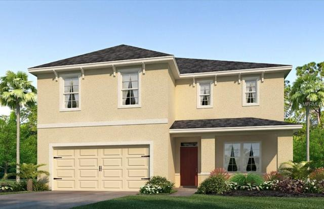 4906 Willow Branch Place, Palmetto, FL 34221 (MLS #T2935255) :: White Sands Realty Group