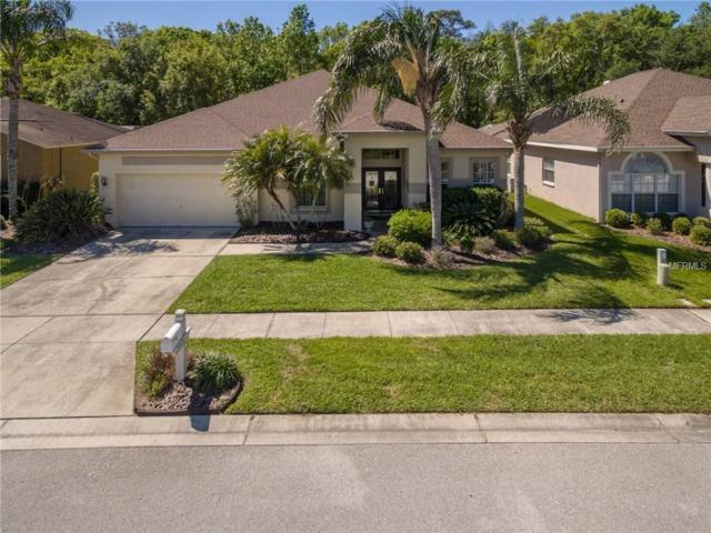 29520 Forest Glen Drive, Wesley Chapel, FL 33543 (MLS #T2935273) :: Team Bohannon Keller Williams, Tampa Properties