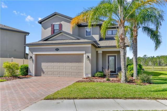 1815 Oak Hammock Court, Lutz, FL 33558 (MLS #T2935409) :: Arruda Family Real Estate Team