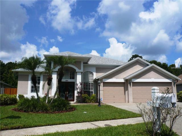 10614 Chambers Drive, Tampa, FL 33626 (MLS #T2935443) :: Delgado Home Team at Keller Williams