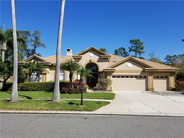 12019 Brewster Drive, Tampa, FL 33626 (MLS #T2935460) :: Delgado Home Team at Keller Williams
