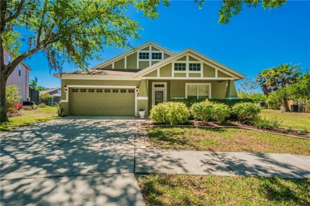 6027 Gannetdale Drive, Lithia, FL 33547 (MLS #T2935554) :: BCA Realty
