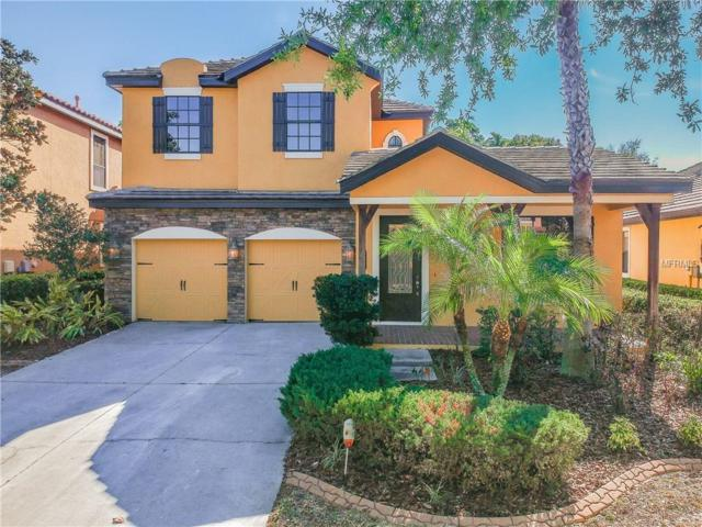 20207 Heritage Point Drive, Tampa, FL 33647 (MLS #T2935572) :: Team Bohannon Keller Williams, Tampa Properties