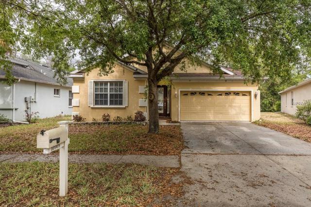 10909 Tree Cactus Loop, Land O Lakes, FL 34638 (MLS #T2935628) :: Cartwright Realty