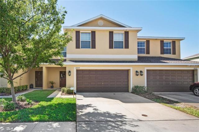 20214 Pond Apple Lane, Tampa, FL 33647 (MLS #T2935635) :: BCA Realty