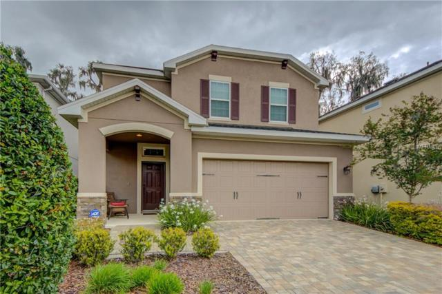 16310 Bayberry View Drive, Lithia, FL 33547 (MLS #T2935655) :: Team Bohannon Keller Williams, Tampa Properties
